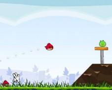 Angry Birds (Сердитые птицы)