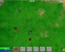 Beetle Wars