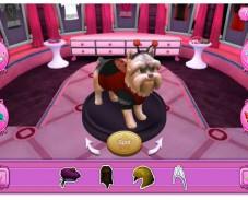 3D одевалка собак