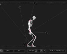 Скелет из проволоки