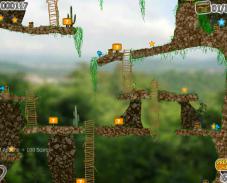 Сокровища джунглей