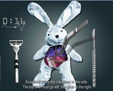 спаси кролика