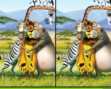 Мадагаскар---Различия