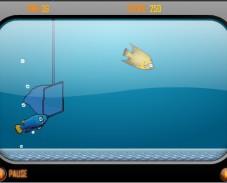 Сачок и аквариум