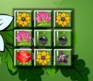 Цветы на память