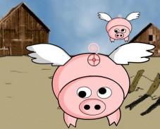 Fly Pig