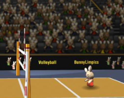 Волейбол для кроликов