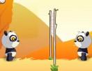 Волейбол с пандами