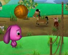Доли волейбол