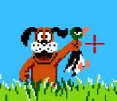 Duck Hunt Plus