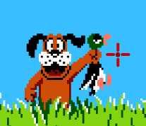 Duck Hunt Plus