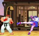 Street Fighter The World Warrior