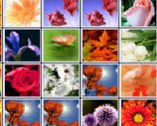 Цветы в маджонг