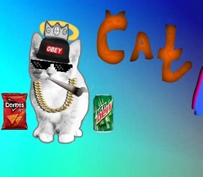 Кликер кота