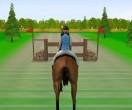Прыжки на лошади 2