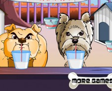 Игра Чемпионат собак онлайн