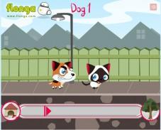 Игра Беги, котенок, беги онлайн