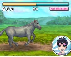 Игра Моя лошадка онлайн