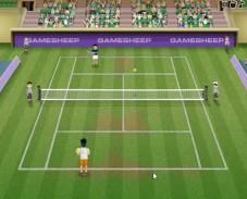 Игра Чемпионат по теннису онлайн