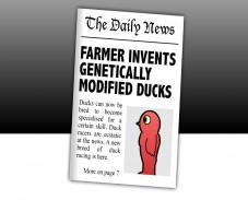 Игра DuckLife3 Evolution онлайн