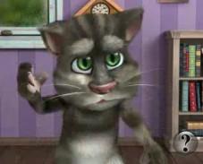 Игра Говорящий кот Том онлайн