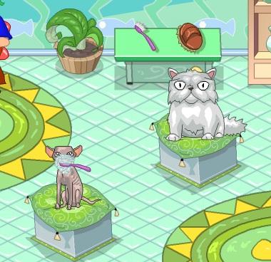 Игра Уход за кошками онлайн