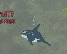Игра Дельфин-касатка онлайн