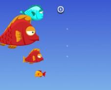 Игра Рыба ест рыбу онлайн