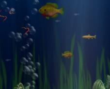 Игра Я рыба онлайн