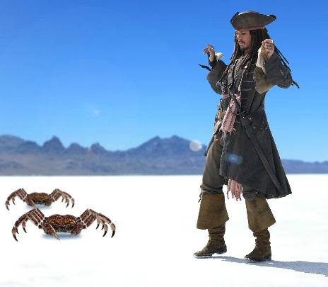 Игра Пираты Карибского моря: охота на крабов онлайн