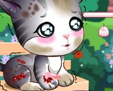 Игра Доктор Плюшева: уход за котенком онлайн