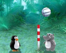 Игра Zoo Volley онлайн