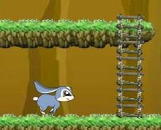 Игра Кико в лесу онлайн