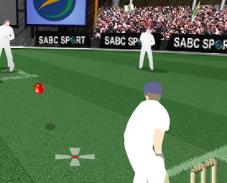 Игра Cricket Challenge онлайн