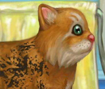 Игра Уход за Кошкой онлайн