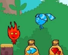 Игра Огонь и Вода: Фанаты Сокровищ онлайн
