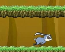 Игра Кико в Лесу Кико собирает морковку по лесу онлайн