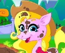 Игра Уход за Пони для Девочек онлайн