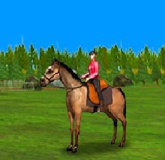 Игра Лошади для Мальчиков онлайн