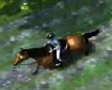 Игра Катание на Лошадях онлайн